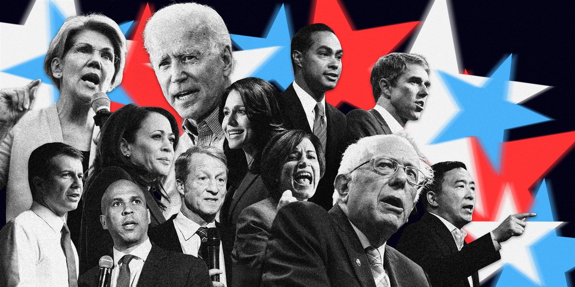 Twelve 2020 democratic presidential candidates